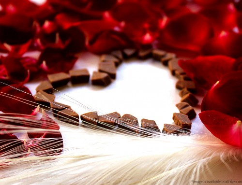 Independence Florists for Valentine's Day