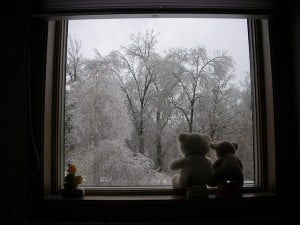 View of a wintry window.