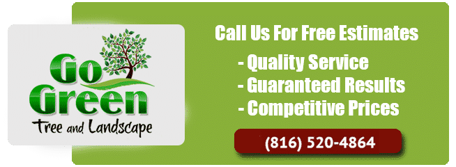 Go Green Tree Service Estimates